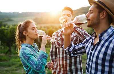 Gör eget vin
