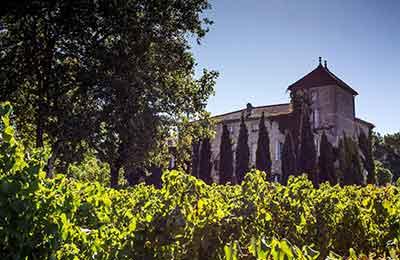 Bo på vingård i Frankrike