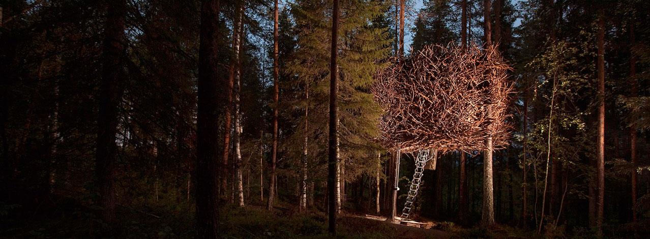 Produktbild för The Bird's Nest - Treehotel för Två (1/2)