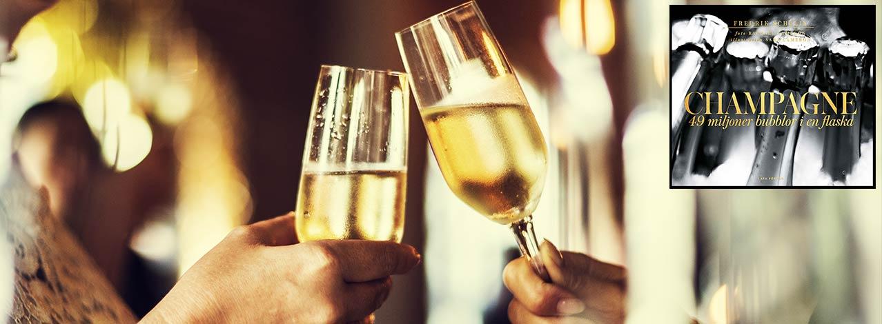Produktbild för Champagneprovning för två + Bok (1/1)