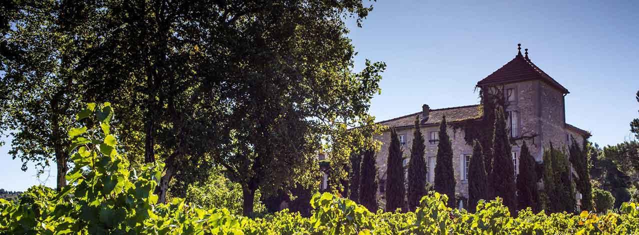 Produktbild för Bo på vingård i Frankrike (1/1)