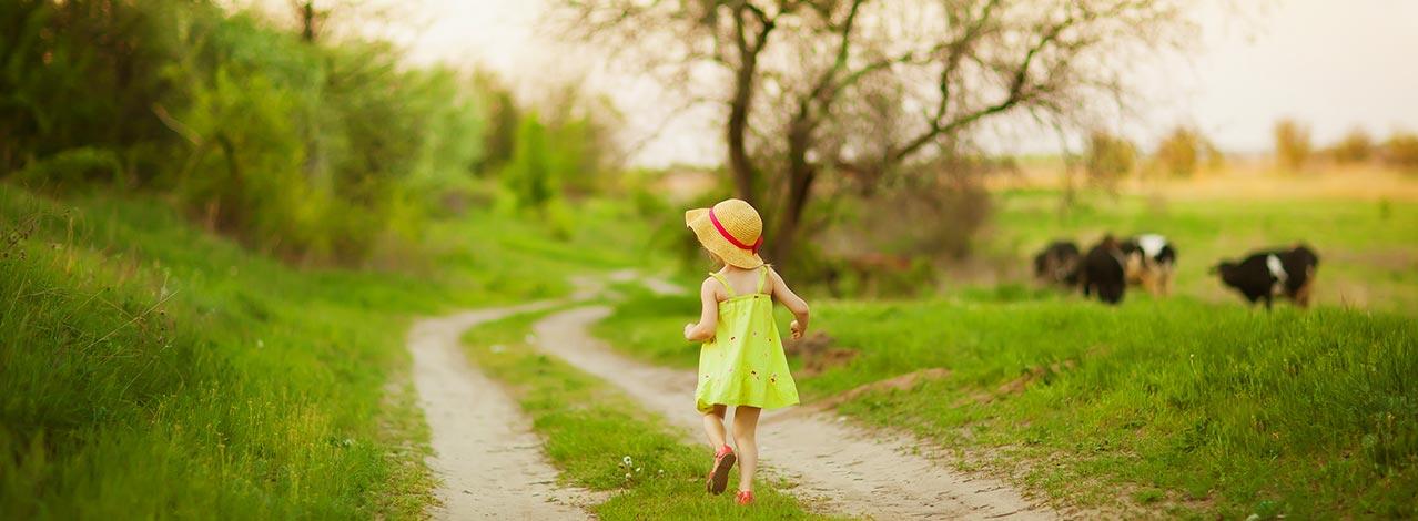 Ett barn går på idylisk traktorväg med betande kor i bakgrunden