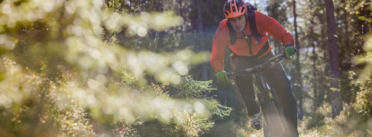 Produktbild för Mountainbike Safari (1/1)