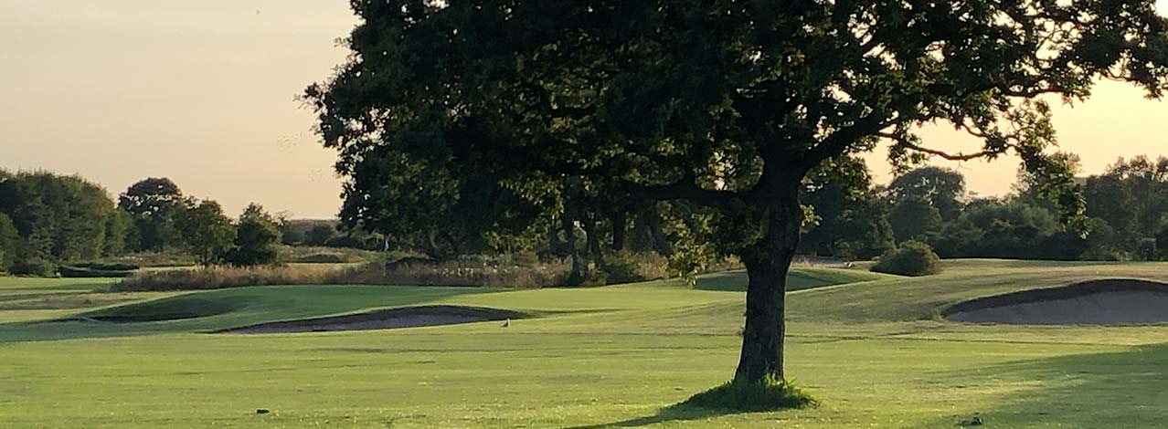 Produktbild för Prova på golf + lunch (1/1)