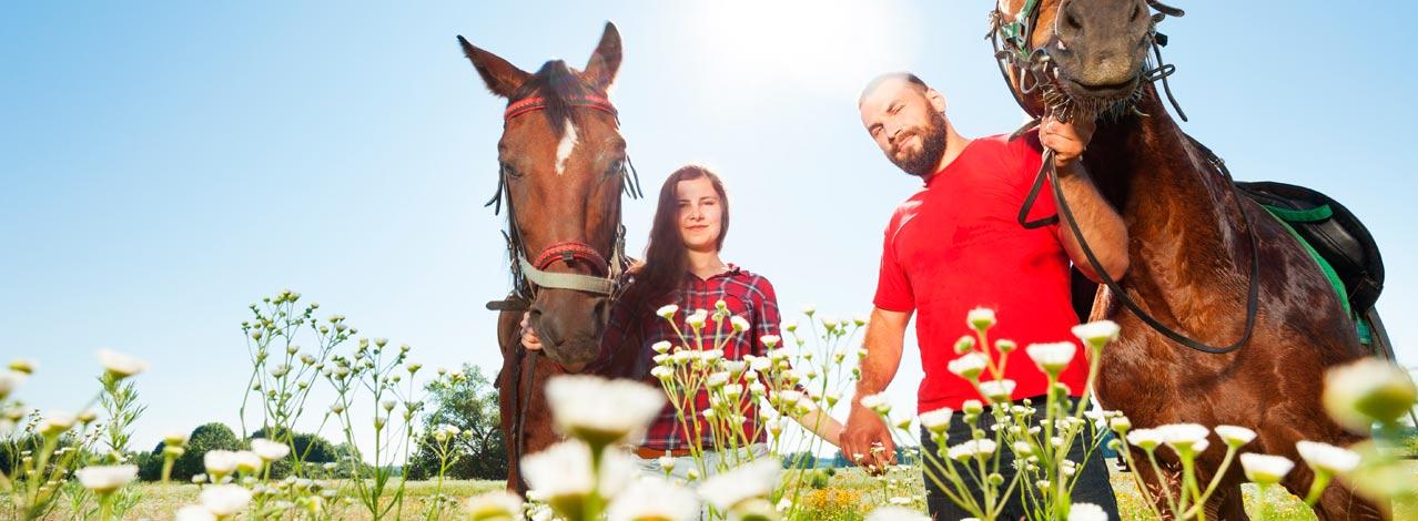 Produktbild för Ridweekend med Islandshästar (1/1)