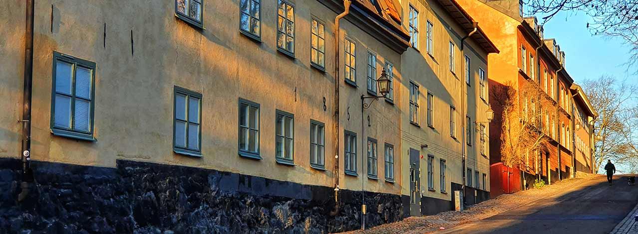 Produktbild för Stadsvandringar i Stockholm (1/1)