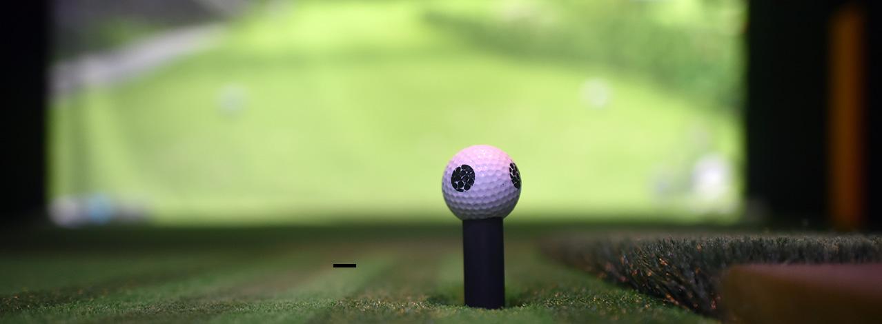 Produktbild för Spela Virtual Golf (1/1)